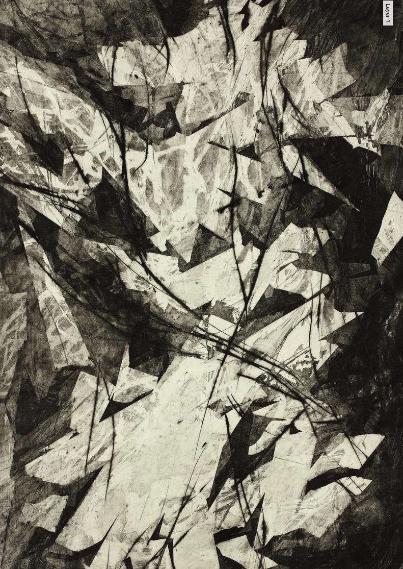 Schlucht 2016 Radierung Kerstin Franke Gneuß 88,6 x 54,6 cm