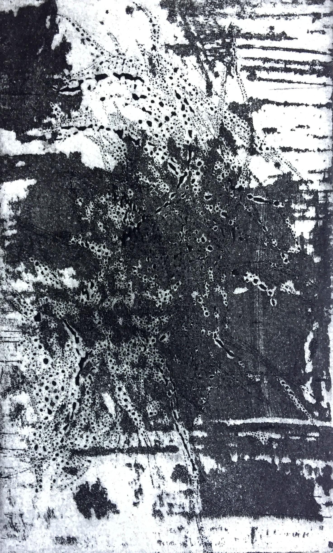 Erdschatten zu Grenzen erfahren von Mathias Bäumel 2019 Reservage/Aquatinta 24 x 16 cm Plattenmaß